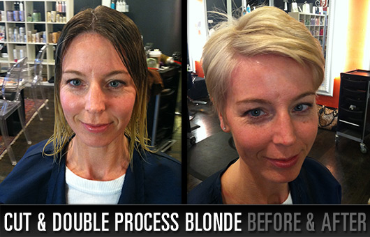 Cut and Double Process Blonde