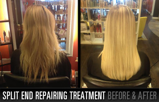 Split End Repairing Treatment